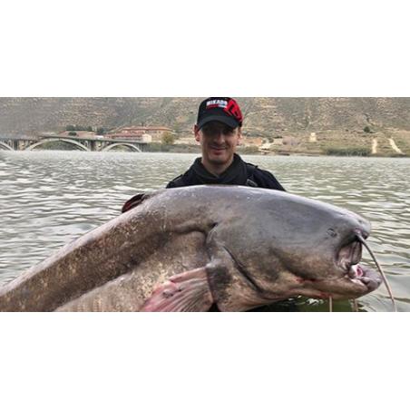 Šamų žvejyba